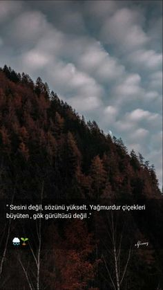 Real Quotes, Book Quotes, Learn Turkish Language, Fake Photo, Sweet Words, Meaningful Words, Galaxy Wallpaper, Quote Posters, Tumblr