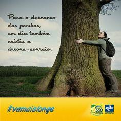 No link Memórias você pode conhecer essa e outras curiosidades históricas sobre os Correios no Brasil.