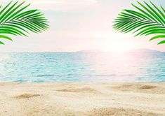 Summer beach photography backdrop for wedding