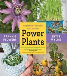 Power Plants: Simple Home Remedies You Can Grow PDF