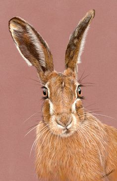 Bewitched - from an original pastel painting, hare print, present for hare…