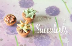 Polymer clay succulent tutorial