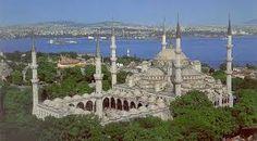 Resultado de imagen de mezquita azul planta