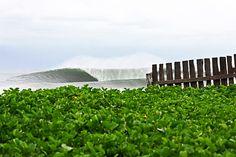 #surfing #emptywaves #lineup #pawasurf #pawa #perfectwave