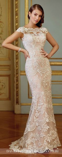 Vintage Embroidered Lace Fit & Flare Wedding Dress- 117291 Zerrin Blush Wedding Dress – David Tutera for Mon Cheri 2017 Best Wedding Dresses, Wedding Attire, Bridal Dresses, Bridesmaid Dresses, Trendy Wedding, Dress Wedding, Wedding Ideas, Wedding Shoes, David Bridal Wedding Dresses