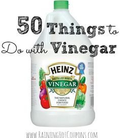50 Things to Do with Vinegar (Cooking, Cleaning, Laundry, Pet Tips)!  http://www.raininghotcoupons.com/vinegar-tips