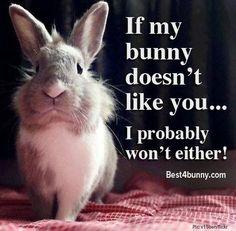 Bunnies know best! www.best4bunny.com
