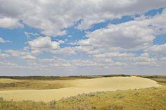 Great Sand Hills, Saskatchewan