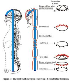 Tibetan Channels and Chakras Chart - - Yahoo Image Search Results