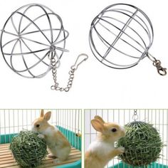 """Application: Bunny, Chinchillas, Guinea Pigs and other small Animals playing or Grass Frame Material: Stainless steel Diameter: 8.5cm / 3.35"""" Color: Silver Quantity : 1 PC"""