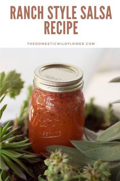 This ranch style salsa recipe is perfect for brand new beginners because it cooks up quickly, is giftable, is delicious, and is relatively fast. Read on for the recipe! Canning Homemade Salsa, Easy Canning, Canning Salsa, Canning Tips, Canning Labels, Canning Recipes, Easy Jam Recipe, Salsa Recipe, Canning Vegetables