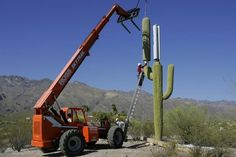 Hiding a cellphone tower...pretty clever. I would much rather look at a fake saguaro.
