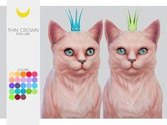Thin Crown   [#ts4_pet]   [#ts4_pet_acc]