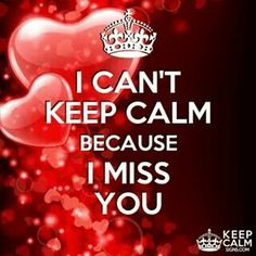 I Can't Keep Calm Because I Miss You