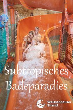 Ihr seid echte Wasserratten? Dann entdeckt das Schwimmbad mit den meisten Rutschen in Ostholstein! Im Subtropischen Badeparadies am Weissenhäuser Strand findet Ihr Rutschen für Groß und Klein. #whs #rutschen Weissenhäuser Strand, Wave Pool, Steam Bath, Amusement Parks, Family Vacations, Baltic Sea