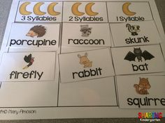 Nocturnal Animal Syllables Sorting