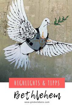 Banksy in Bethlehem - Streetart und Murals in Palästina Banksy Mural, Graffiti, Tromso, Bethlehem, Places To Go, Around The Worlds, Explore, Highlights, Poster
