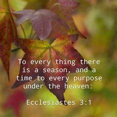 Ecclesiastes 3:1 KJV