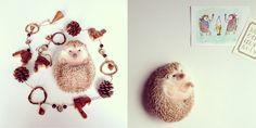 Darcy the Flying Hedgehog on Instagram