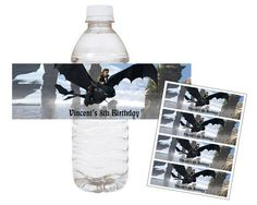 How to Train Your Dragon Hiccup- Printable Water Bottle Wraps
