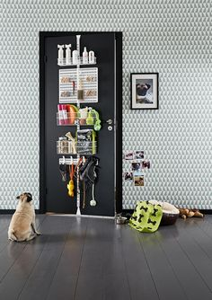 Elfa Door and wall rack for the dog.