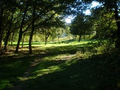 Robledo de Zamanzas, Valle de Zamanzas #Merindades #Burgos