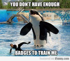 You Don't Have Enough Badgesto Train Me