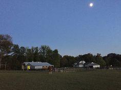 Heading to the barn.