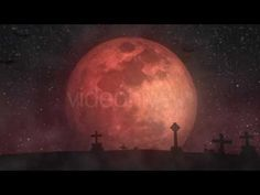 Halloween Moon Looped Background || Videohive - YouTube