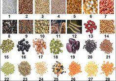 Frutas, vegetales, especies, condimentos, legumbres y cereales con potencial para prevenir el cáncer.    FRUTAS     Frutas : 1 manzana, 2 ...