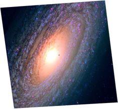 Hubble Legacy Archive