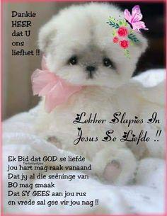 Evening Greetings, Goeie Nag, Afrikaans, Bible Scriptures, Teddy Bear, Night, Sleep Tight, Motivational Quotes, Yard