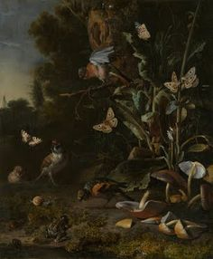 Melchior d'Hondecoeter: Birds, Butterflies and a Frog among Plants and Fungi (1668).
