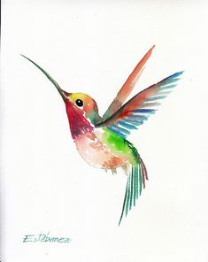 Acuarela original pintura colibrí decoración para el hogar arte fino - Malerei u. Hummingbird Tattoo Watercolor, Hummingbird Drawing, Watercolor Bird, Watercolor Artists, Watercolor Animals, Watercolor Illustration, Watercolor Paintings, Animal Drawings, Art Drawings