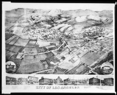 Lithograph of Los Angeles, ca.1871 :: California Historical Society Collection, 1860-1960