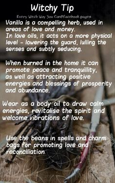 Witchy Tip: Vanilla