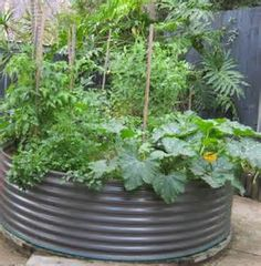 Image detail for -Raised Garden Beds - How to Build Them for Better Vegetables