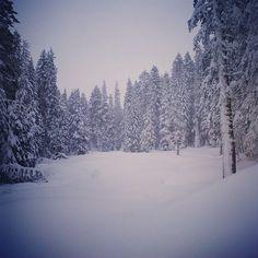 Bear Yuba Land Trust wishes you all the wonder of the great outdoors this holiday season! www.bylt.org #30Landscapes30Days #SaveLand #DonateToLandConservation #BearYubaLandTrust