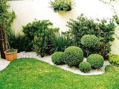 Boxwood garden plants are drought-tolerant. Properly mulching the shallow-rooted boxwood garden plants helps retain moisture and keep roots cool. Succulent Landscaping, Landscaping With Rocks, Modern Landscaping, Backyard Landscaping, Backyard Ideas, Garden Ideas, Landscaping Ideas, Landscaping Software, Outdoor Ideas