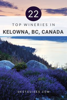 Did you know that the Okanagan Valley in British Columbia is the wine-making capital of Canada? One of the main things to do in Kelowna, which is located in the Okanagan region, is to go on a tour of the wineries. So if you're unsure which should be at the top of your list, come and explore the 20+ wineries in Kelowna and the surrounding Okanagan area with Destguides! | Kelowna wineries | Okanagan Valley wineries |#wineries #OkanaganValley #Kelowna #BritishColumbia #Canada #Destguides