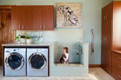 A lavanderia é um dos melhores locais na casa para colocar as instalações do bichinho, que precisa de espaço, comida e brinquedos