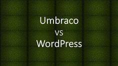 Umbraco vs WordPress Technology Updates, Wordpress, Trends, Beauty Trends
