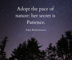 """Adopt the pace of nature: her secret is Patience."" - Ralph Waldo Emerson Click for more quotes on Patience!"