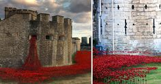 Amapolas Cerámica Rodean La Torre De Londres Para Conmemorar A Soldados Caídos En La Primera Guerra Mundial