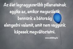#idezet