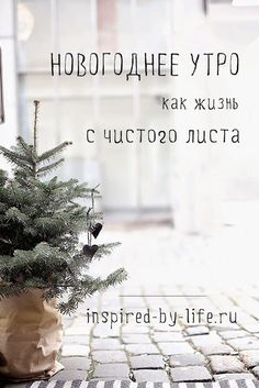 Новогоднее утро