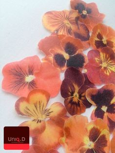 40 red edible cake decoration - edible toppers -  red wedding favors - orange wedding - edible butterflies by Uniqdots on Etsy