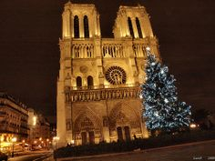 PARIS.    Cathédrale Notre-Dame