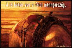 Régi arab mondás a lovaglásról.