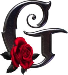 """Photo from album """"Gothic Rose Alphabet"""" on Yandex. Gotisches Alphabet, Gothic Alphabet, Fancy Letters, Monogram Letters, Letters And Numbers, Creative Lettering, Lettering Design, Letter G Tattoo, Abc Font"""